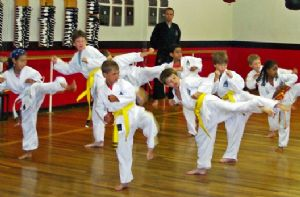Class of Yellow and White Belts Kicking